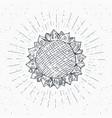 sunflower sketch vintage label hand drawn grunge vector image vector image