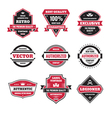 graphic badges collection vector image vector image
