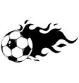 isolated soccer ball football ball vector image vector image