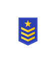 military rank army epaulettes icon vector image vector image