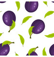 seamless pattern with ripe plums isolated on white vector image vector image