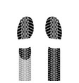 shoes print tire track vector image vector image