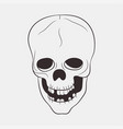 skull human vector image