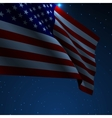 USA American flag vector image