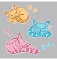 Cute kittens sleeping vector image vector image