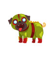 funny pug dog character dressed in green military vector image vector image