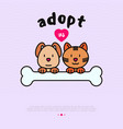 pet adoption concept funny cat and dog with bone vector image vector image