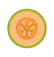 slice melon fruit isolated on white vector image