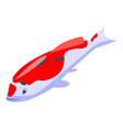 tattoo koi carp icon isometric style vector image vector image