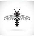 wasp on a white background insect animal vector image vector image