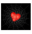 a heart is in a spider web vector image vector image