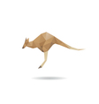 Kangaroo abstract isolated vector image vector image