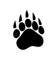 paw prints logo isolated vector image vector image