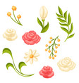set various wedding flowers vector image vector image