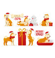 christmas dog cartoon characters vector image