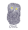 Doodle owl vector image vector image