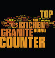 granite counter tops partii text background word vector image vector image