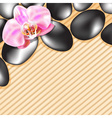 Spa Stones on a Bamboo Background vector image vector image
