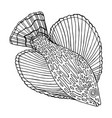 fish sea animal coloring page for adult and kids vector image