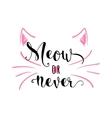 kitten calligraphy sign vector image vector image