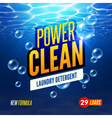 Laundry Detergent packaging template design vector image vector image