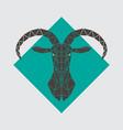 mountain goat polygonal head vector image vector image