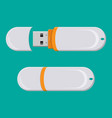usb pc flash drive isolated on white vector image