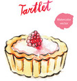 watercolor hand tartlet with raspberry vector image vector image