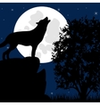Wolf on stone in the night vector image vector image