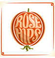 logo for rose hips vector image vector image
