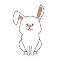 rabbit bunny pet vector image vector image
