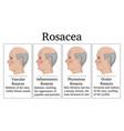 rosacea vector image