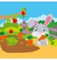 Rabbit Gnawing Carrot In Garden vector image