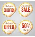Autumn Sale Stickers vector image