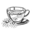 cup tea with chamomile isolated on white vector image