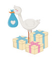 stork with gift boxes vector image vector image