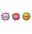 summer sale special offer new collection banner vector image vector image