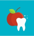 Tooth care infographics element vector image