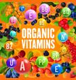vitamins content of wild and garden berries vector image vector image