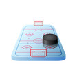 3d hockey rink with gates and black puck isolated vector image vector image