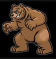 angry cartoon grizzly bear vector image