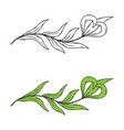 floral element for the logo vector image