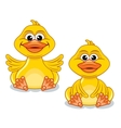 Funny Cartoon Duck vector image