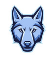 mascot stylized wolf head vector image vector image