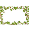 rectangular jungle frame with vines lianas and vector image vector image