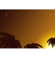 Starry sky amidst tropical palms vector image vector image