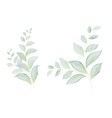 watercolor set green leaves vector image vector image