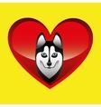 siberian husky dog face design vector image