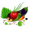 Vegetables set on white background vector image