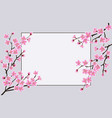 blooming sakura branches with frame for text vector image vector image